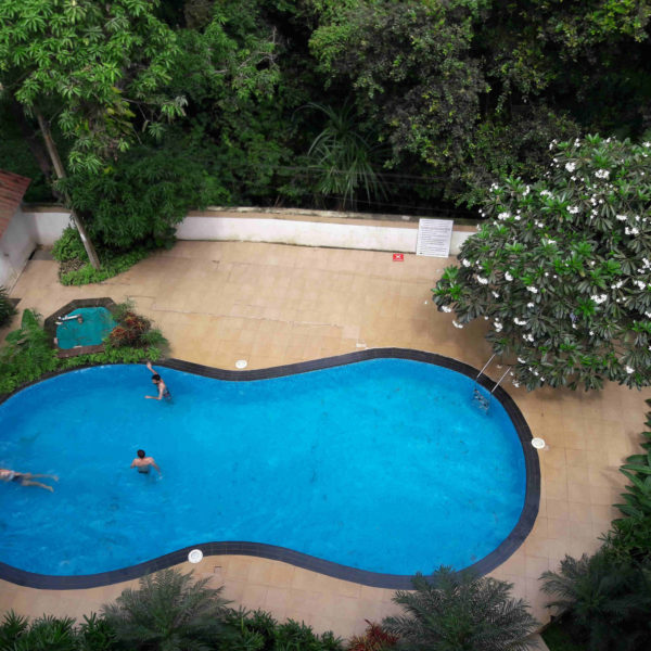 Swimming pool, Ivy retreat